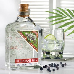 Elephant London Dry Gin 0 5 L 45 vol