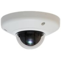 IP Cam Level One